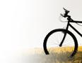Proveedores de bicicletas